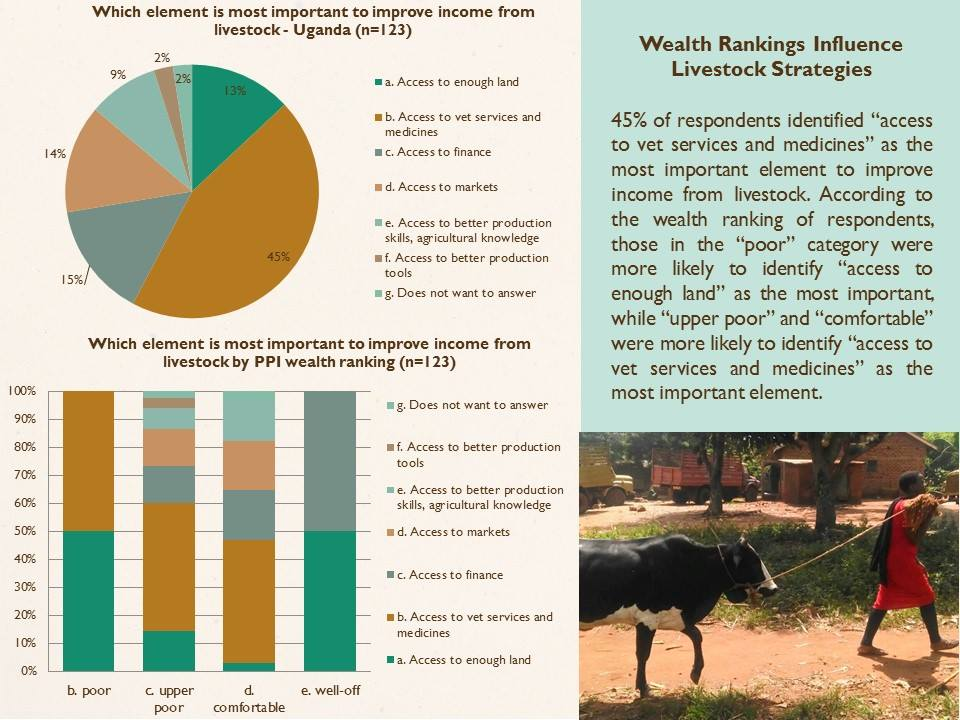 wealth-and-livestock